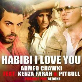 Ahmed Chawki, Kenza Farah et Pitbull